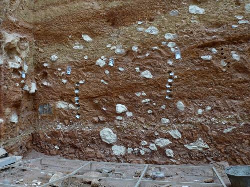 Recreació d'una excavació a Atapuerca. Museo de la Evolución Humana. Foto JL. Diez.
